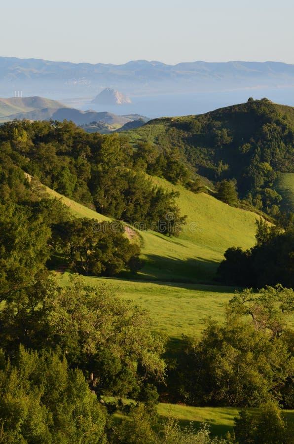 Kalifornien gräsplanbacke arkivbild