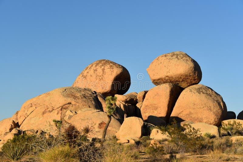 Kalifornien Joshua Tree National Park Rock bildande royaltyfria bilder