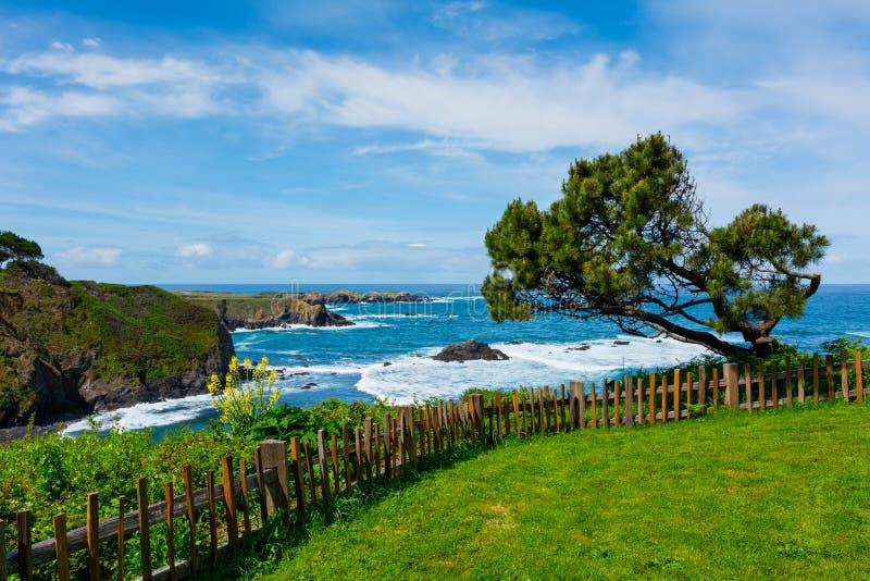 Kalifornien kust fotografering för bildbyråer