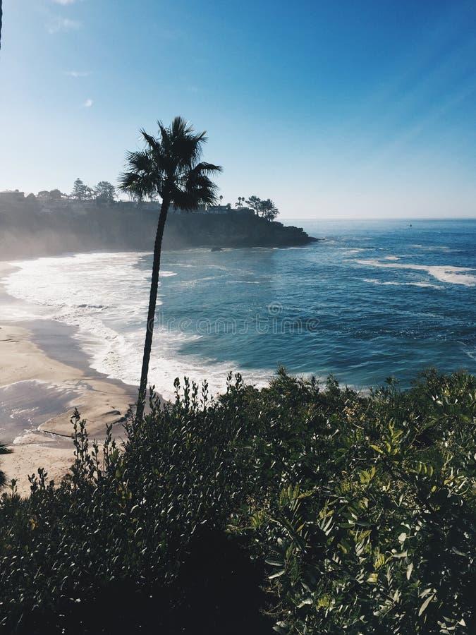 Kalifornien kust med en palmträd i mitt- ram arkivfoton