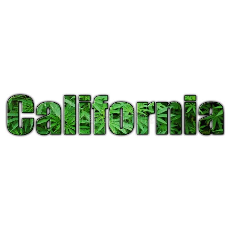 Kalifornien marijuanaLogo With Clear Background High kvalitet royaltyfri illustrationer
