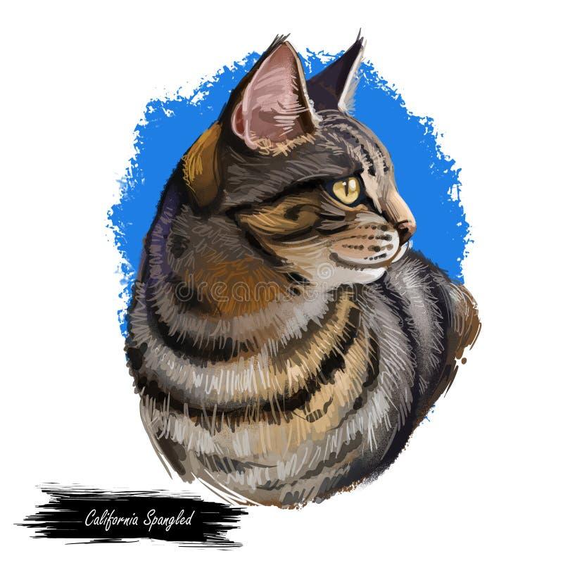 Kalifornien Spangled Cat Portrait Isolated, Digital konst stock illustrationer
