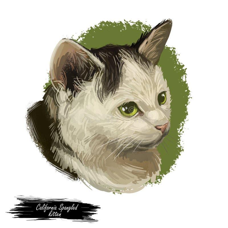 Kalifornien Spangled Cat Portrait Isolated, Digital konst royaltyfri illustrationer