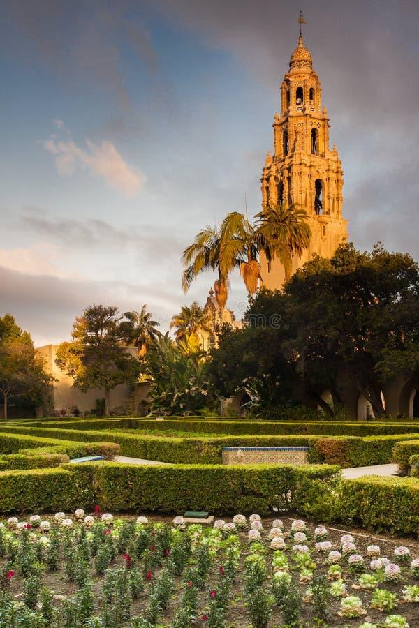 Kalifornien står hög royaltyfri bild