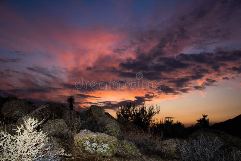 Kalifornien-Wüstensonnenunterganglandschaft mit buntem Himmel lizenzfreies stockbild