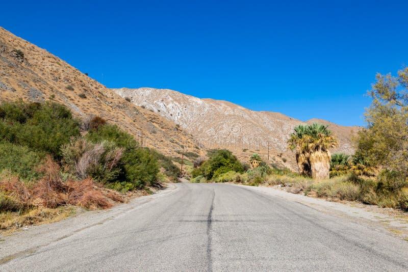 Kalifornijczyk pustyni krajobraz zdjęcia stock