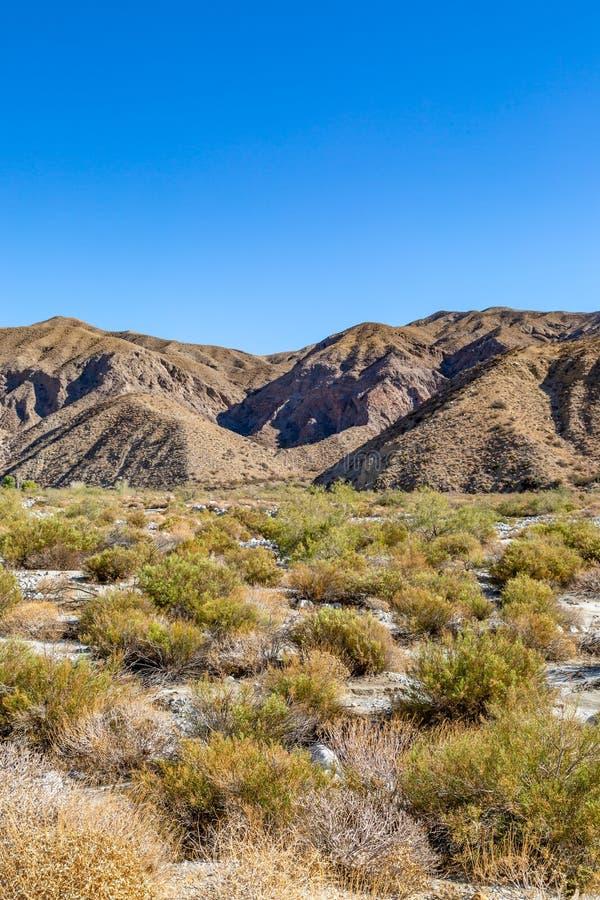 Kalifornijczyk pustyni krajobraz obrazy royalty free