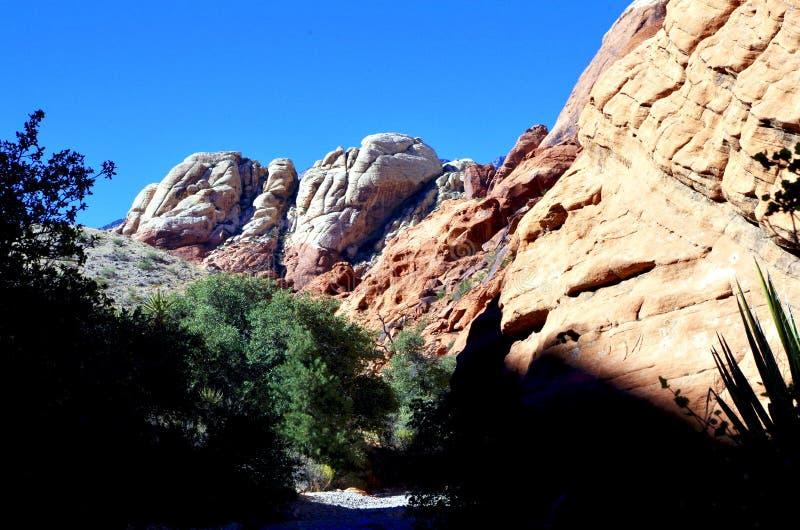 Kalikåbehållare som är röda vaggar naturvårdsområde, sydliga Nevada, USA royaltyfri bild