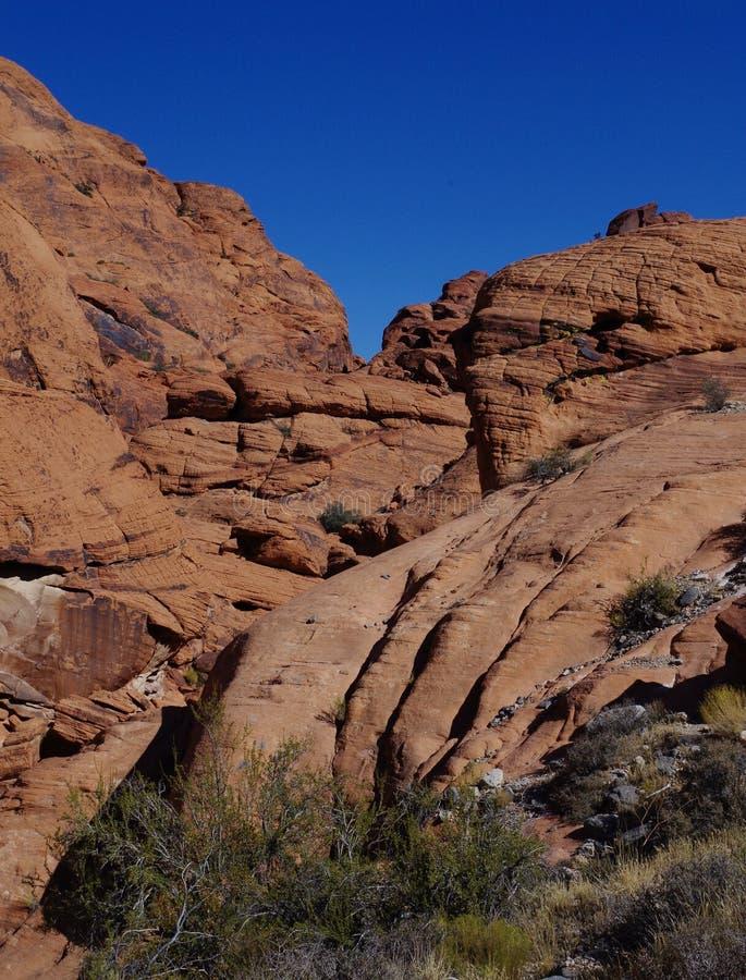 Kalikåbehållare som är röda vaggar naturvårdsområde, sydliga Nevada, USA royaltyfri foto