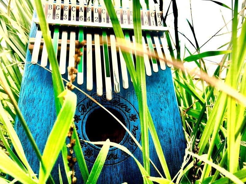 Kalimba musikinstrument och gräs royaltyfri fotografi