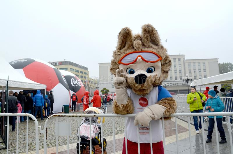 KALININGRAD, RUSSIA. The mascot of the FIFA World Cup of FIFA 2018 Zabivak`s wolf cub gives best regards stock photo