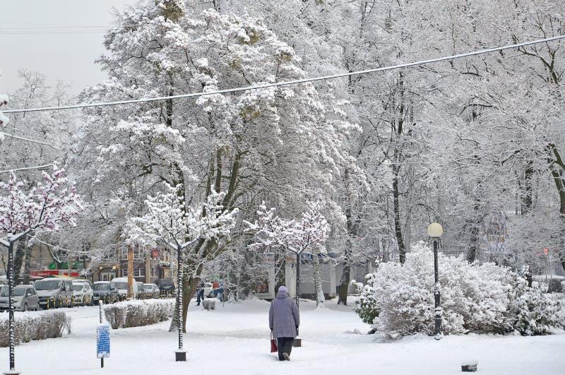 Kaliningrad, Russland Eine Winterstadtlandschaft auf Festivalnaya-Alleen-Straße lizenzfreies stockfoto
