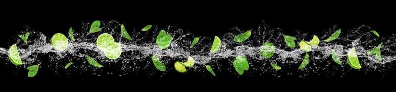 Kalk, Blätter und Wasserspritzen stockfotos