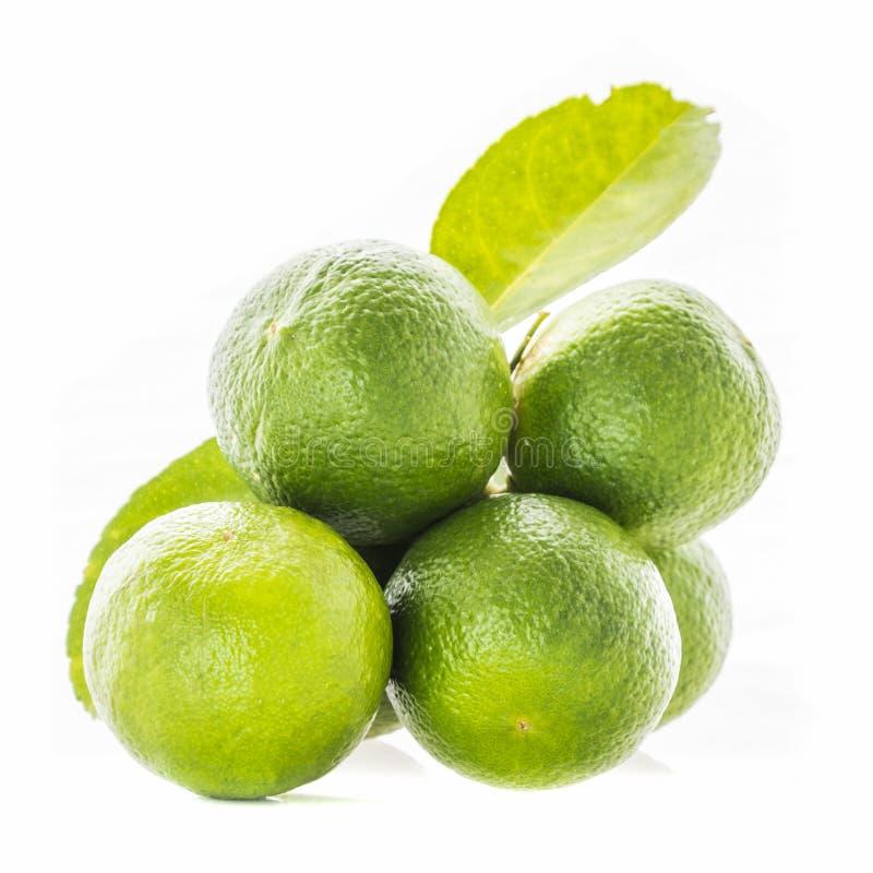 Kalk Frische Frucht getrennt stockfoto