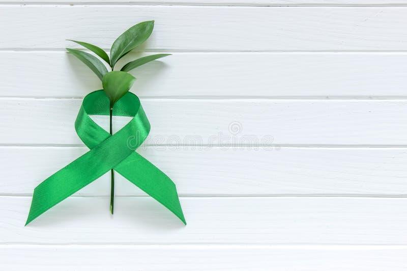 Kalk Groen Lint op witte houten achtergrond, dag van de wereld de Geestelijke gezondheid royalty-vrije stock foto's