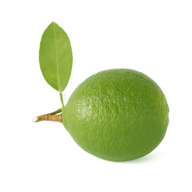 Kalk met groen blad Ge?soleerdj op witte achtergrond royalty-vrije stock foto's