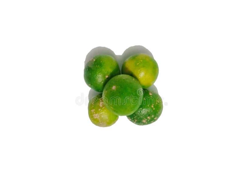 Kalk Vers die fruit met blad op witte achtergrond wordt ge?soleerd royalty-vrije stock foto
