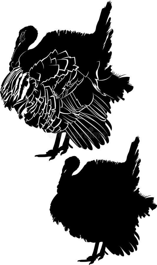 kalkon vektor illustrationer
