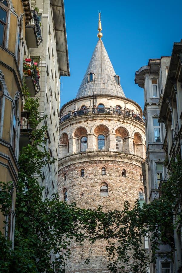 kalkon för galataistanbul torn arkivbild