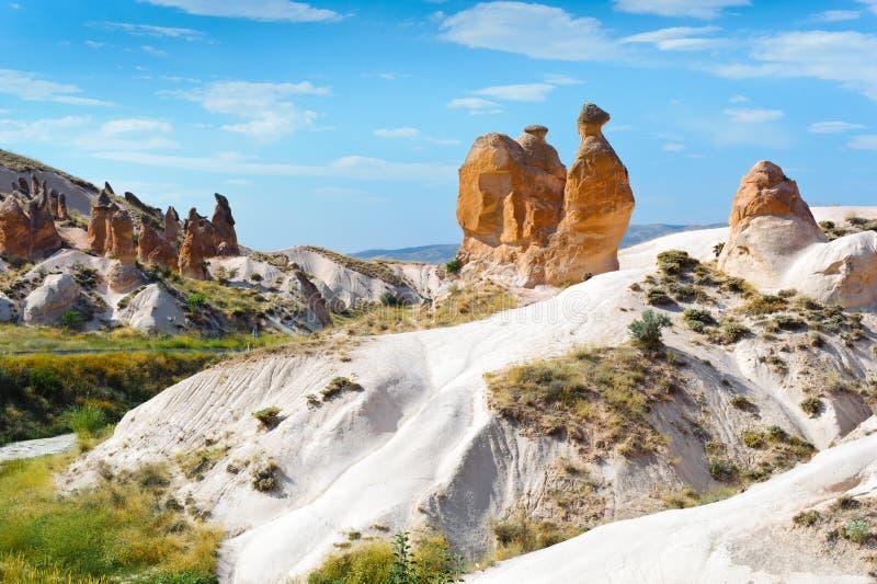 kalkon för kamelcappadociarock fotografering för bildbyråer