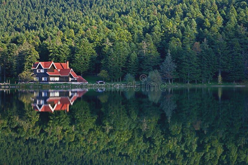 kalkon för reflexion för lake för skoggolcukhus royaltyfri foto
