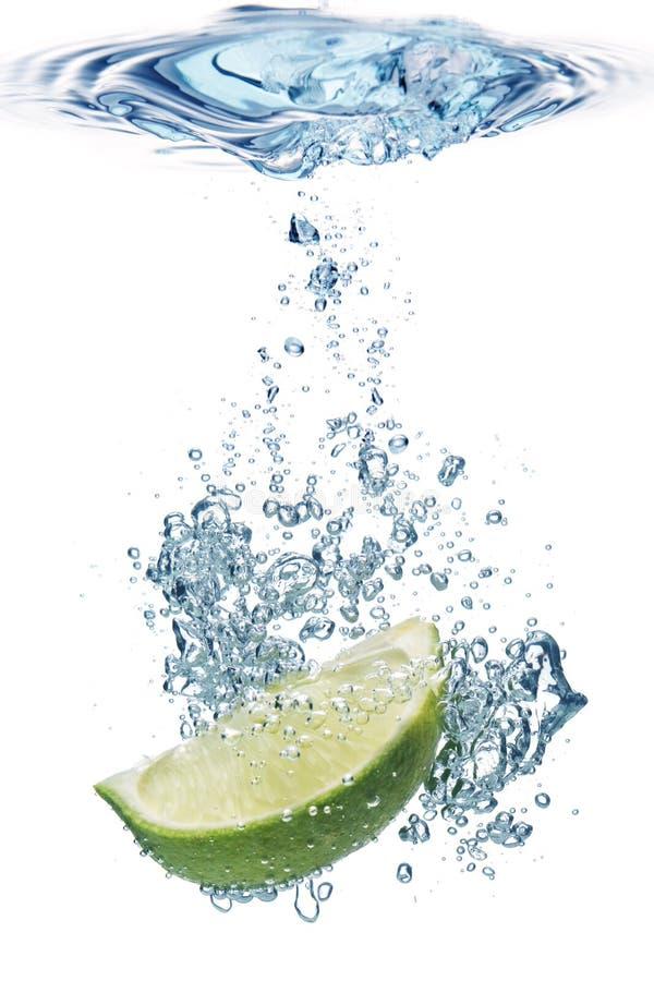 Kalkscheibe im Wasser stockbilder