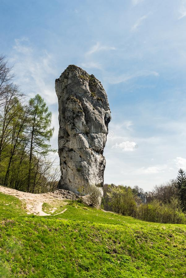 Kalksteen rots geroepen ' Maczuga Herkuklesa' ( Hercules-knuppel ) in het Nationale Park van Ojcow dichtbij Krakau, Polen stock afbeelding