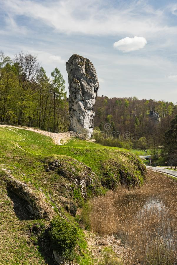 Kalksteen rots geroepen ' Maczuga Herkuklesa' ( Hercules-knuppel ) in het Nationale Park van Ojcow dichtbij Krakau, Polen stock foto