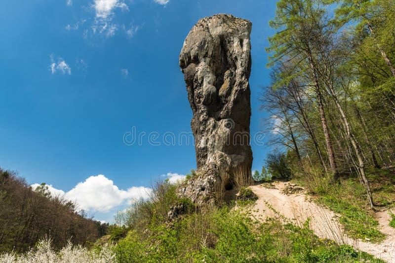 Kalksteen rots geroepen ' Maczuga Herkuklesa' ( Hercules-knuppel ) in het Nationale Park van Ojcow dichtbij Krakau, Polen stock foto's