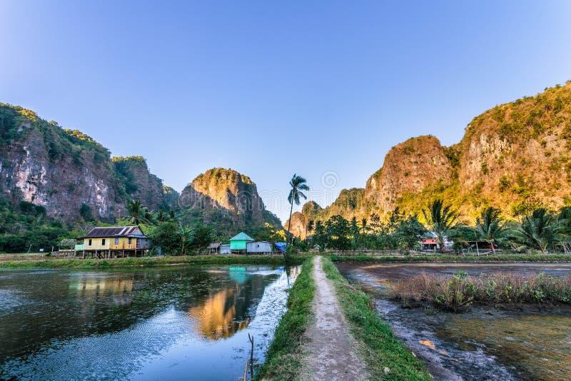 Kalksteenbos in Zuiden Sulawesi Indonesië royalty-vrije stock fotografie