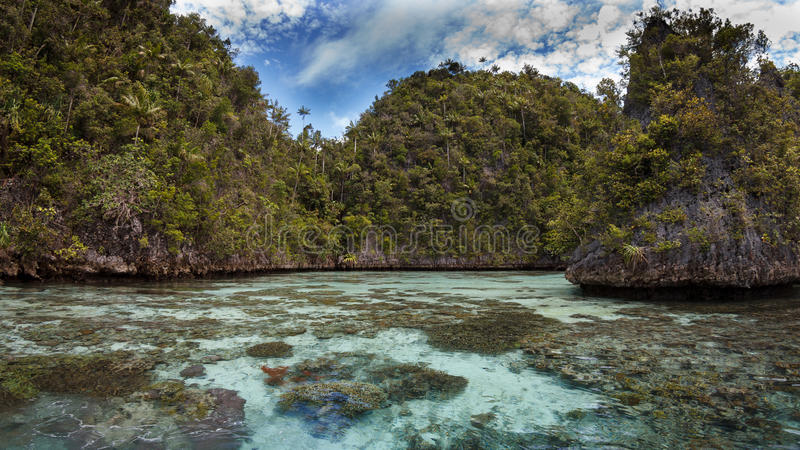 Kalksteeneiland in de lagune, Radja ampat, Indonesië 01 stock foto