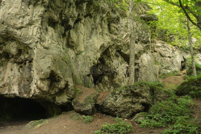 Kalksteenholen stock foto