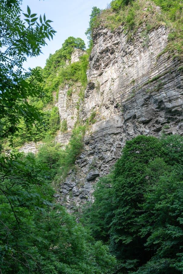 Kalksteenrots in een bergvallei met groene struiken stock afbeelding