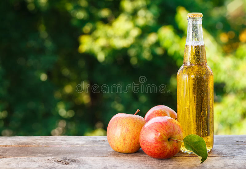 Kall äppelcider i flaska royaltyfri bild