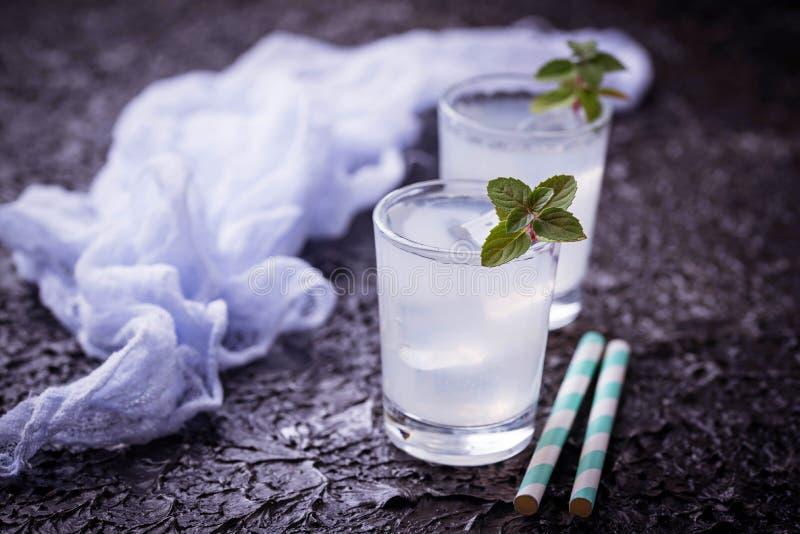 Kall drink med mintkaramellen arkivbilder