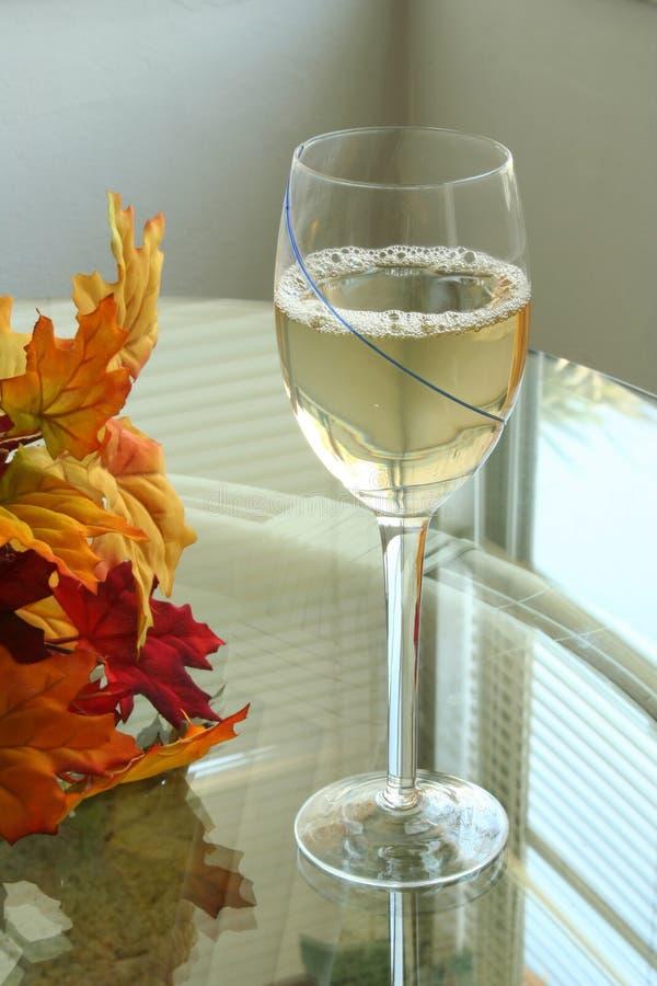 kall glass vit wine 7 royaltyfria bilder