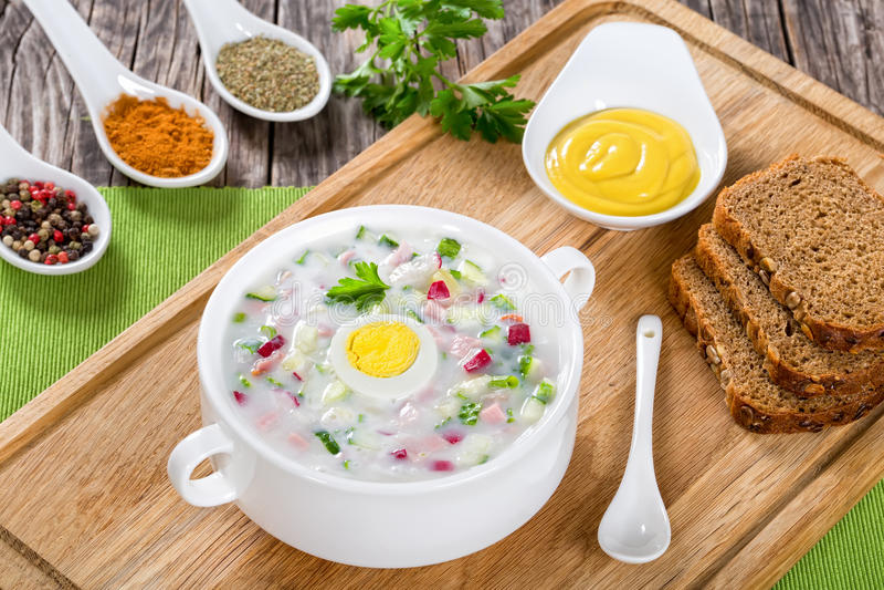 Kall Ingen-kock soppa med grekisk yoghurt och grönsaker royaltyfri foto