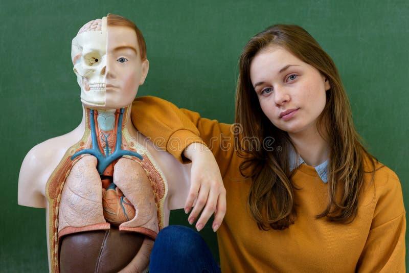 Kall kvinnlig högstadiumstudentstående med en konstgjord människokroppmodell Student som har gyckel i biologigrupp royaltyfri bild