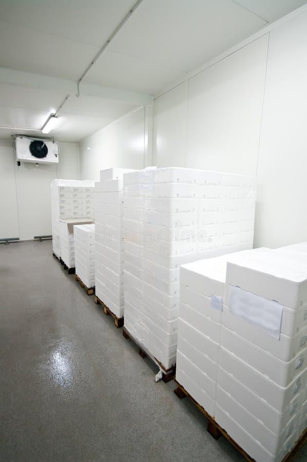 kall lagring arkivbilder