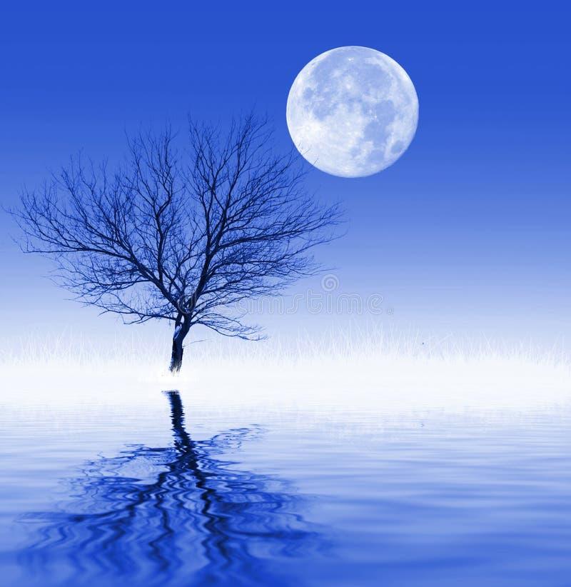 kall månbelyst natt stock illustrationer