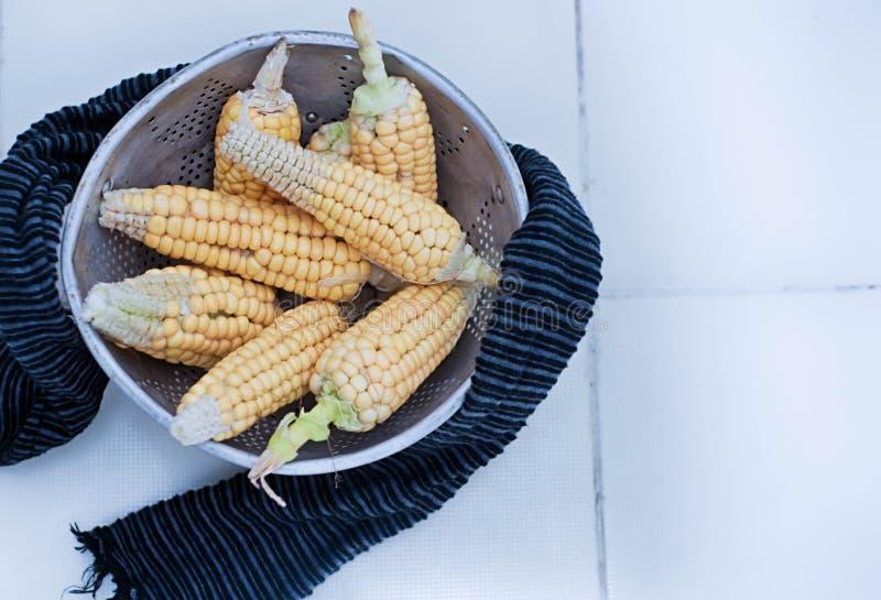 kall mat fotografering för bildbyråer