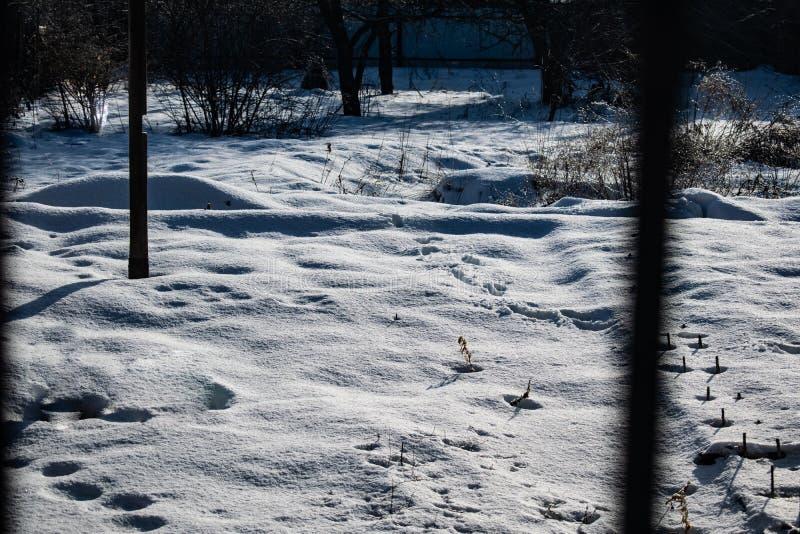 Kall och f?r sn? vit bakgrund Frosty Sunny dag och kallt Sikten fr?n f?nstret Texturen av knaprig sn? p? jordningen royaltyfria bilder