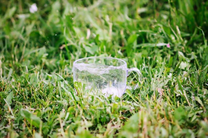 Kall sötvatten med iskuber i genomskinliga exponeringsglaskoppoutoors i sommardag arkivfoton