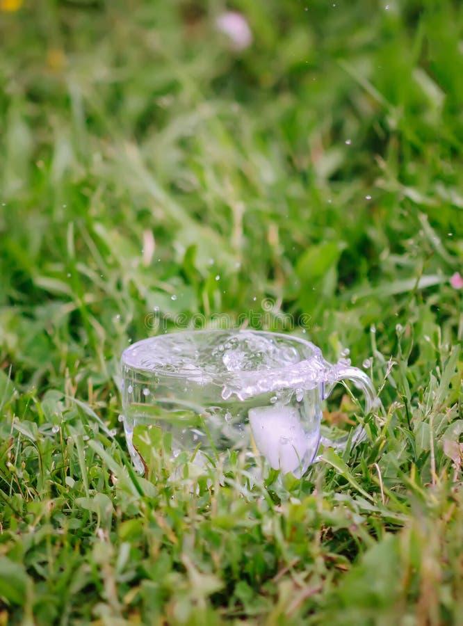 Kall sötvatten med iskuber i genomskinliga exponeringsglaskoppoutoors i sommardag arkivfoto