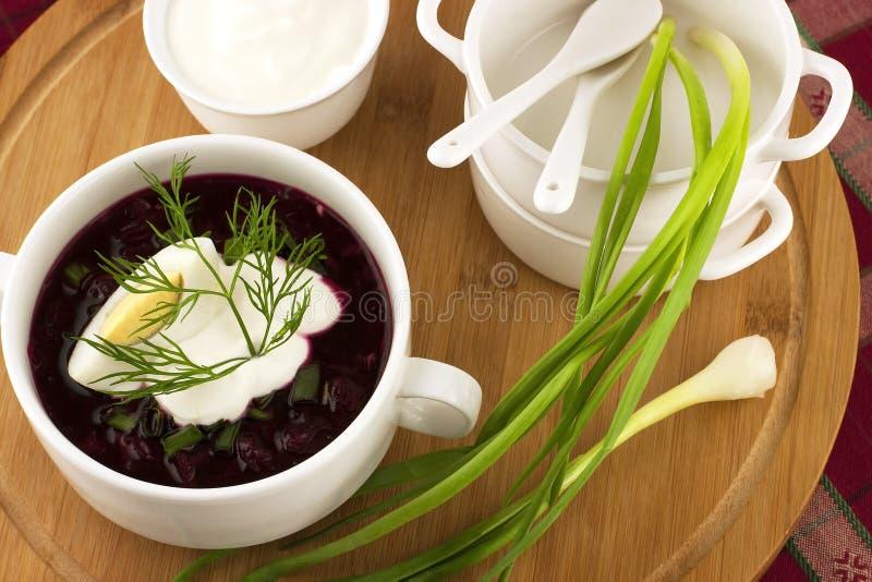 Kall soppa för sommar med beta, gurkan och ägget royaltyfri fotografi