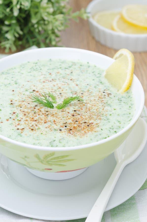 Kall soup med kefir och nya den selektiva örtcloseupen fokuserar royaltyfri bild
