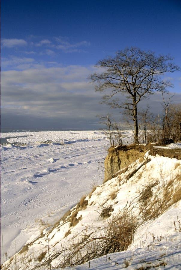 kall vinter arkivbilder