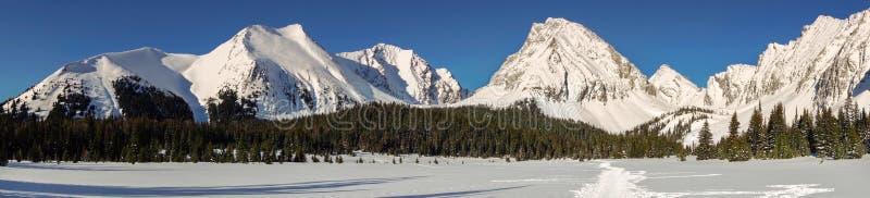 Kall vinter Kananaskis Alberta Canada för snöig landskap för bergmaxima panorama- royaltyfria foton