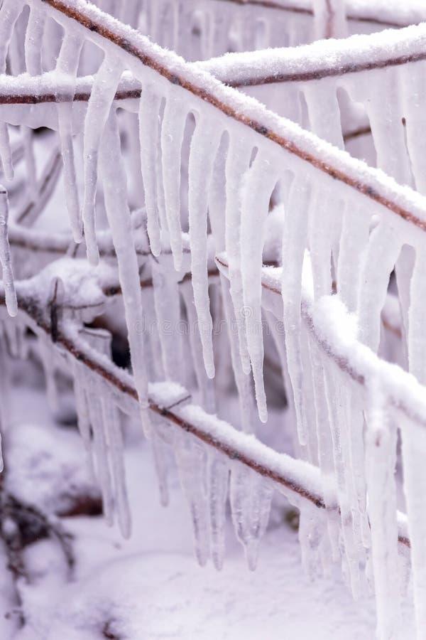 Kall vinterdag med många istapp royaltyfri fotografi