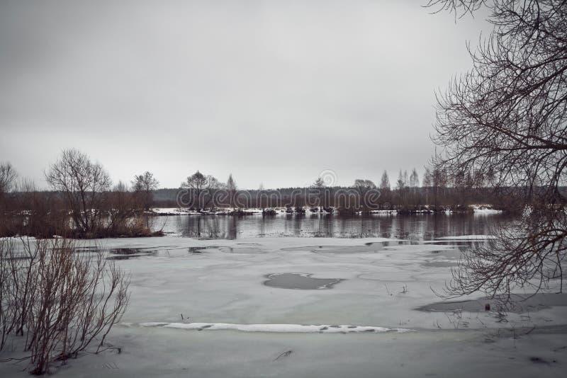 Kall vinterdag på flodbanken Skog på bakgrund arkivbilder